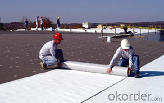 Waterproof/Waterpfoofing Membrane For Roofing