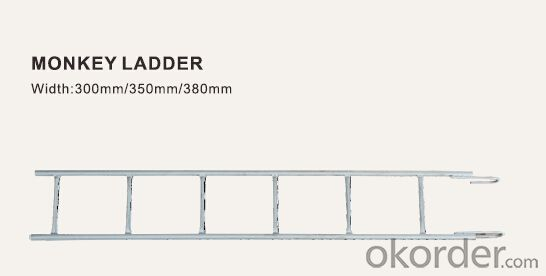 Monkey Ladder 300*3000 for Ring Lock Scaffold System CNBM