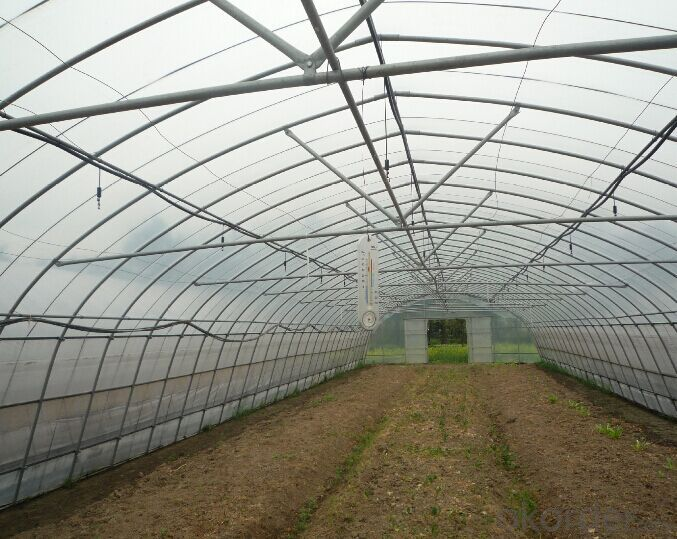 Multispan Plastic Film Greenhouse for Tomato Cucumber Flower Horticulture