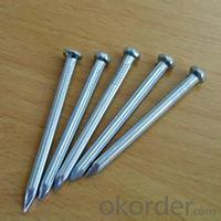 Iron Common Nail/2.5 Inch Common Nail Iron Common Nail with Factory Price
