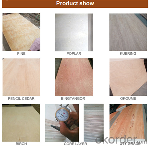 Decorative Poplar Material Commercial Plywood