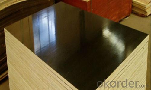 WBP Black Film Faced Plywood 15mm Marine Plywood