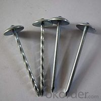 Galvanized Roofing Nails with Screws and Washer High Quality