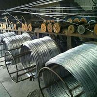Hot Dipped Galvanized Iron Wire 0.9mm and 1.15mm 25Kg Per Roll