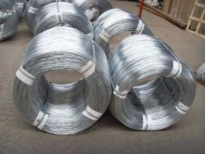 Galvanized Wire Mesh from Factory Directly Lower Price