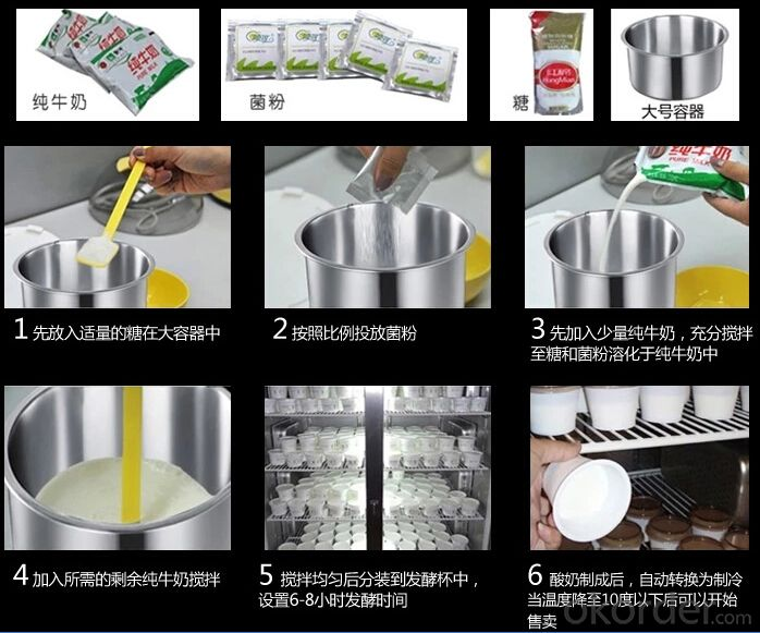 Commercial Yogurt Make / Industrial Yogurt Machine