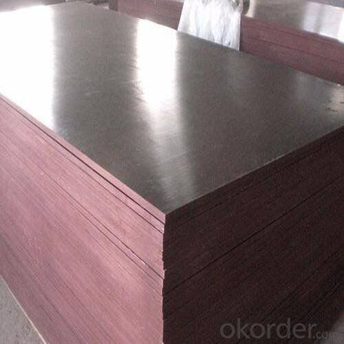 Poplar Core Film Faced Plywood with Good Quality and Competitive Price