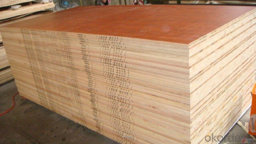 Melamine Paper Face block Board Falcata Core