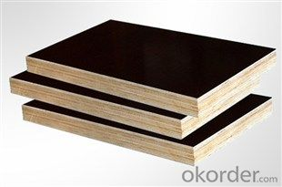 Combi Core (Poplar Core and Hardwood Core) Black Film Faced Plywood