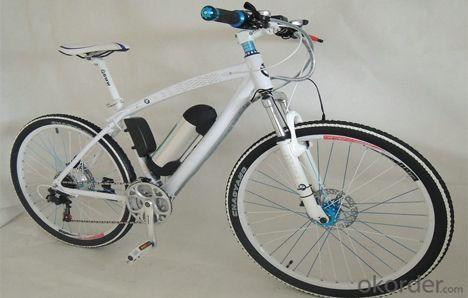 36V 10ah Electric Bicycle Battery 12ah Li-ion Battery Pack for E-bike