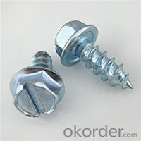 Hex Flange Tapping Screws Cut-17Point with EPDM 25mm Washers