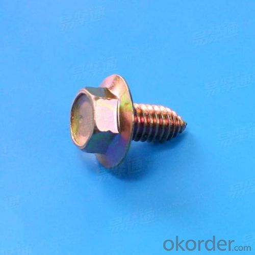 Cross Recessed Pan Head Self Tapping Screws with High Quality