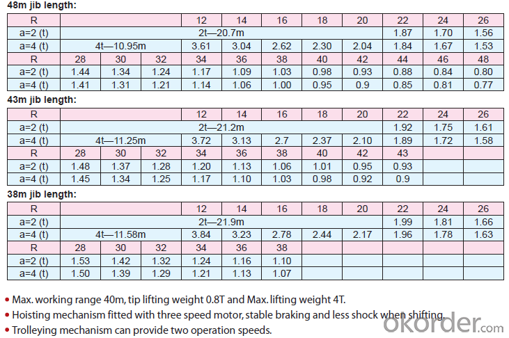 Max Loading Capacity 4 T Tower crane TC4808
