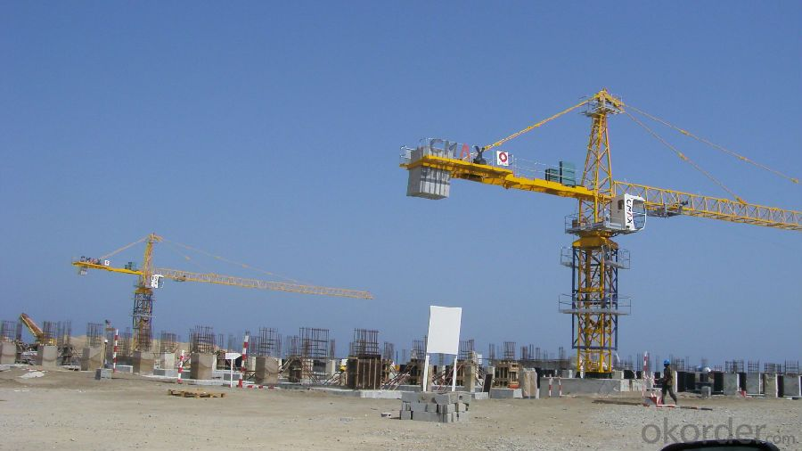 Hammer Head Tower Crane TC6014 Used In Construction Site