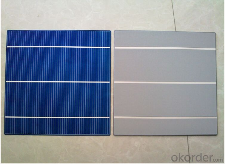 Polycrystalline Solar Cells A GRADE Wholesale High Efficiency with Low Price