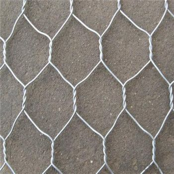 Welded Wire Mesh with Good Quality and Nice Price Made in China