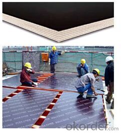 Timber Beam Formwork for WISA Plywood with Long Using Lifetime