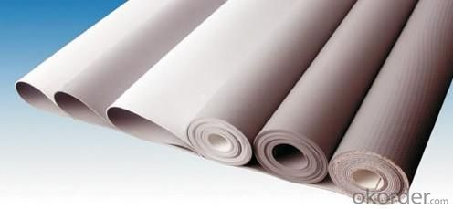Thermoplastic Polyolefin (TPO)Roofing Membrane