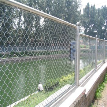 PVC Coated Chain Link Wire Mesh Galvanized WIre Mesh Factory Price Made in China