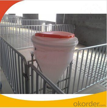 Galvanized Weaning Crate or Stall for Piglets or Calves 3*1.8m