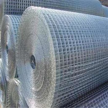 Galvnized Wire Mesh/Hot Dipped and Electro Galvanized Made in China Factory