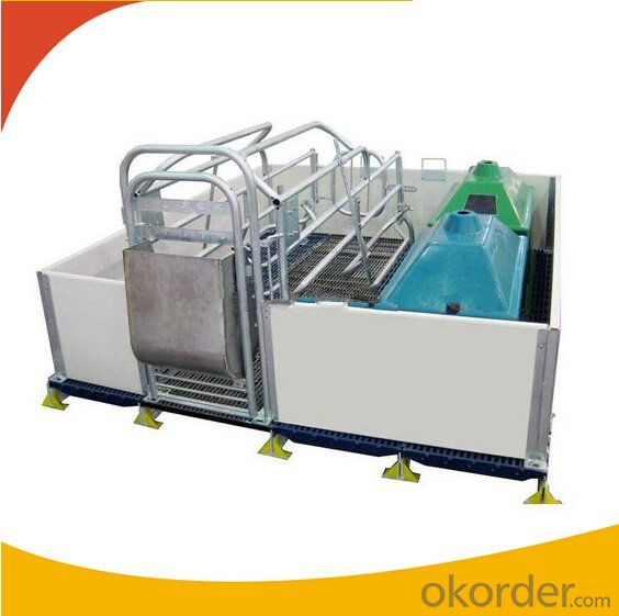 Galvanized Gestation Crate or Stall for Piglets with PVC Wall(1 Booths)