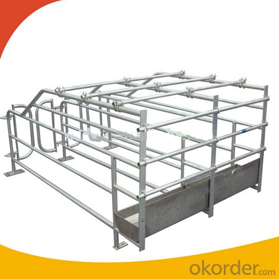 Galvanized Gestation Crate or Stall for Piglets(2 Booths)