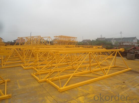 10 Tons Flat-top Tower Crane (QTZ125) TCP6015