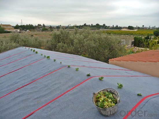Weed Control Fabric for Green Plants Stab Resistant