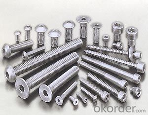 30 Years Factory Hexagon Socket Machine Screw Stainless Steel