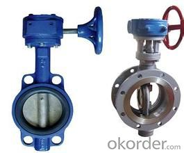 Butterfly Valve High Quality Steel Wafer Marine Stainless