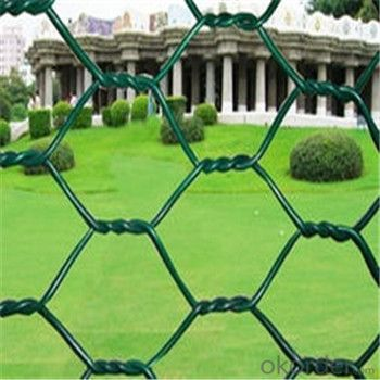 "Hexagonal Wire Mesh 1/4"",3/4"" Cheap Chicken Fence Safe Factory"