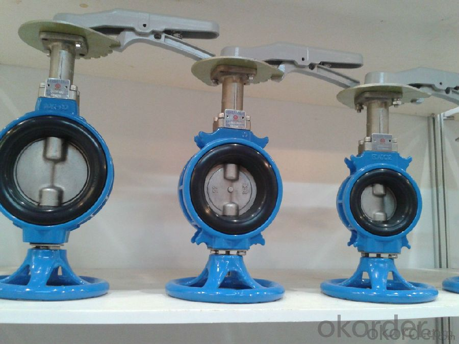 Butterfly Valve Stainless Steel Clean Hygienic Sanitaryfly