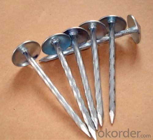 Roofing Nails with Good Price and High Quality