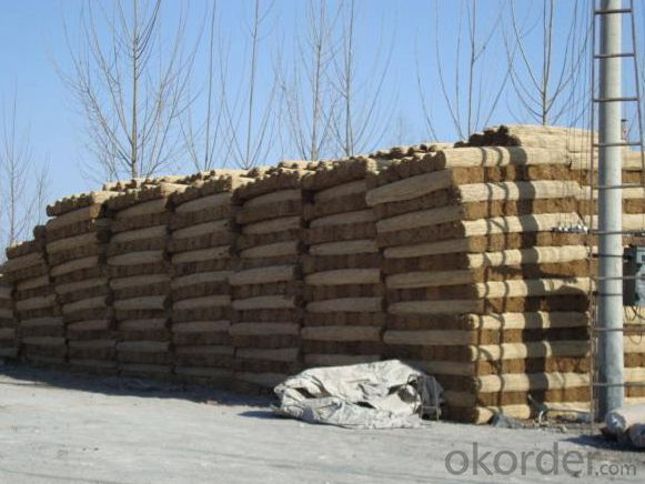 White Reed Screen Reed Fence for Decoration