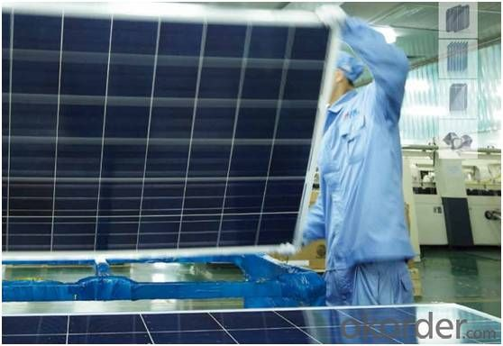 Solar Modules (Poly-Crystatline solar Panel)TPB156×156-36-P