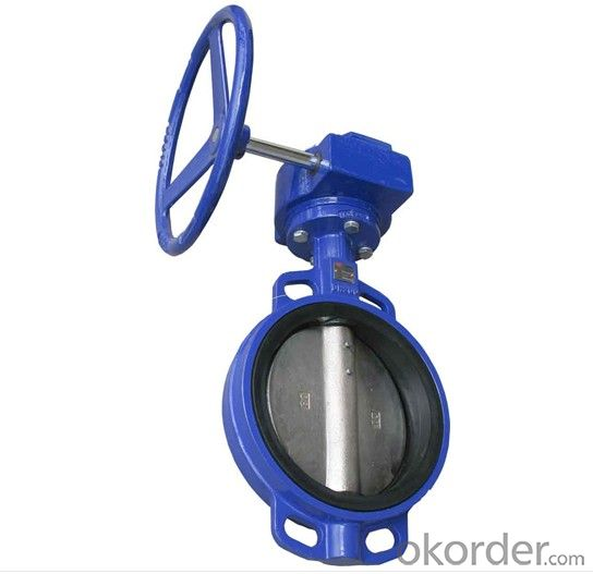 Butterfly Valve OEM Flange Connection 1 Inch Double Flange