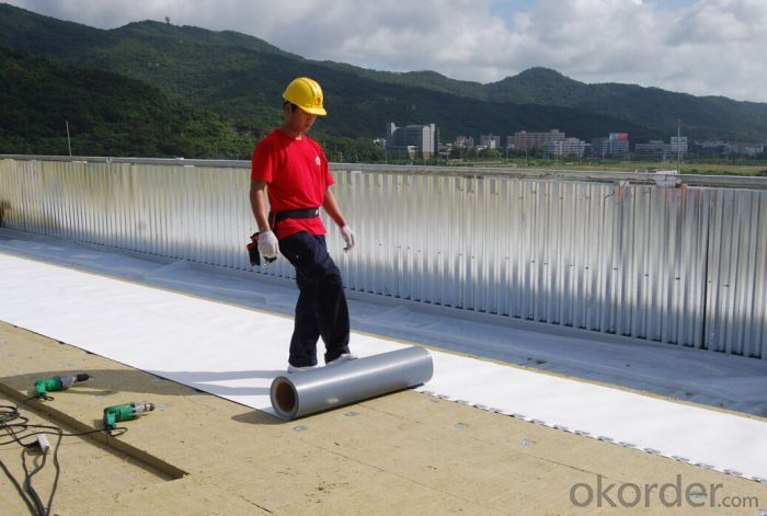 TPO Waterproof Roofing Membrane Thickness with 1.0 mm