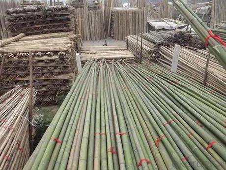 White Natural Bamboo Bamboo Poles Bamboo Sticks