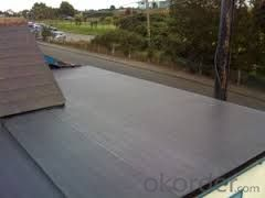 SBS Modified Bitumen Waterproofing Membrane Waterproof Asphalt Membrane