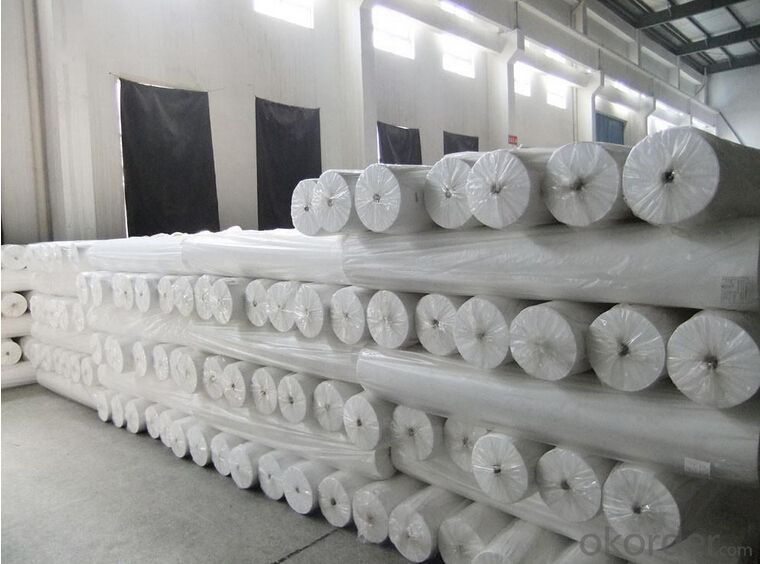 White Color PET Polyester Geotextile Filter Fabric Price