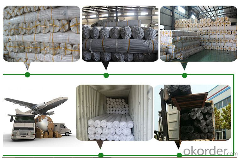 Geotextile for Slope Protection,High Strength Coastal Use Woven Geotextile