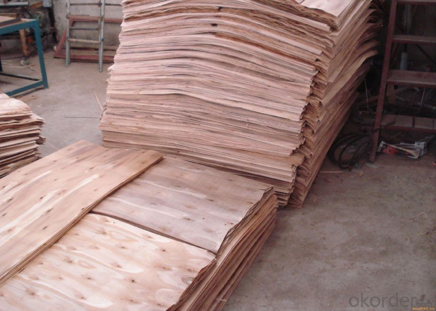Film Faced Plywood, Marine Plywood for Construction Formwork
