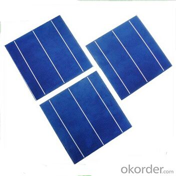 Polycrystalline  Solar Cells Series- 156mm×156mm±0.5mm