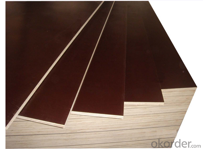Brown Color Poplar Material Film Faced Plywood