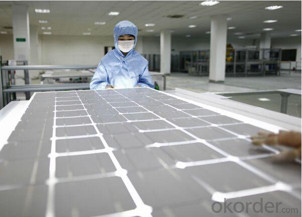Polycrystalline Silicon Solar Panel 255W CNBM