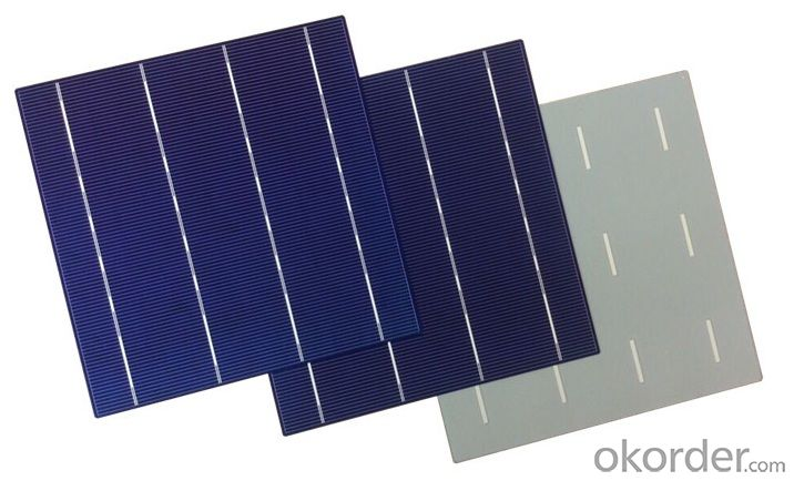 ​156 x 156mm Polycrystalline Silicon Solar Cell