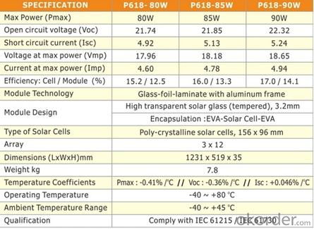 80W SOALR PANEL&MONOSILICON MODULES/ HIGH EFFICIENCY