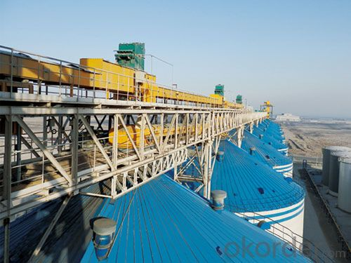 Corn Silo for Grain Storage for 1000-20000T Kinds