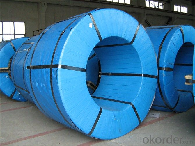 Pre-painted Steel Coil for Super Cold Room Building